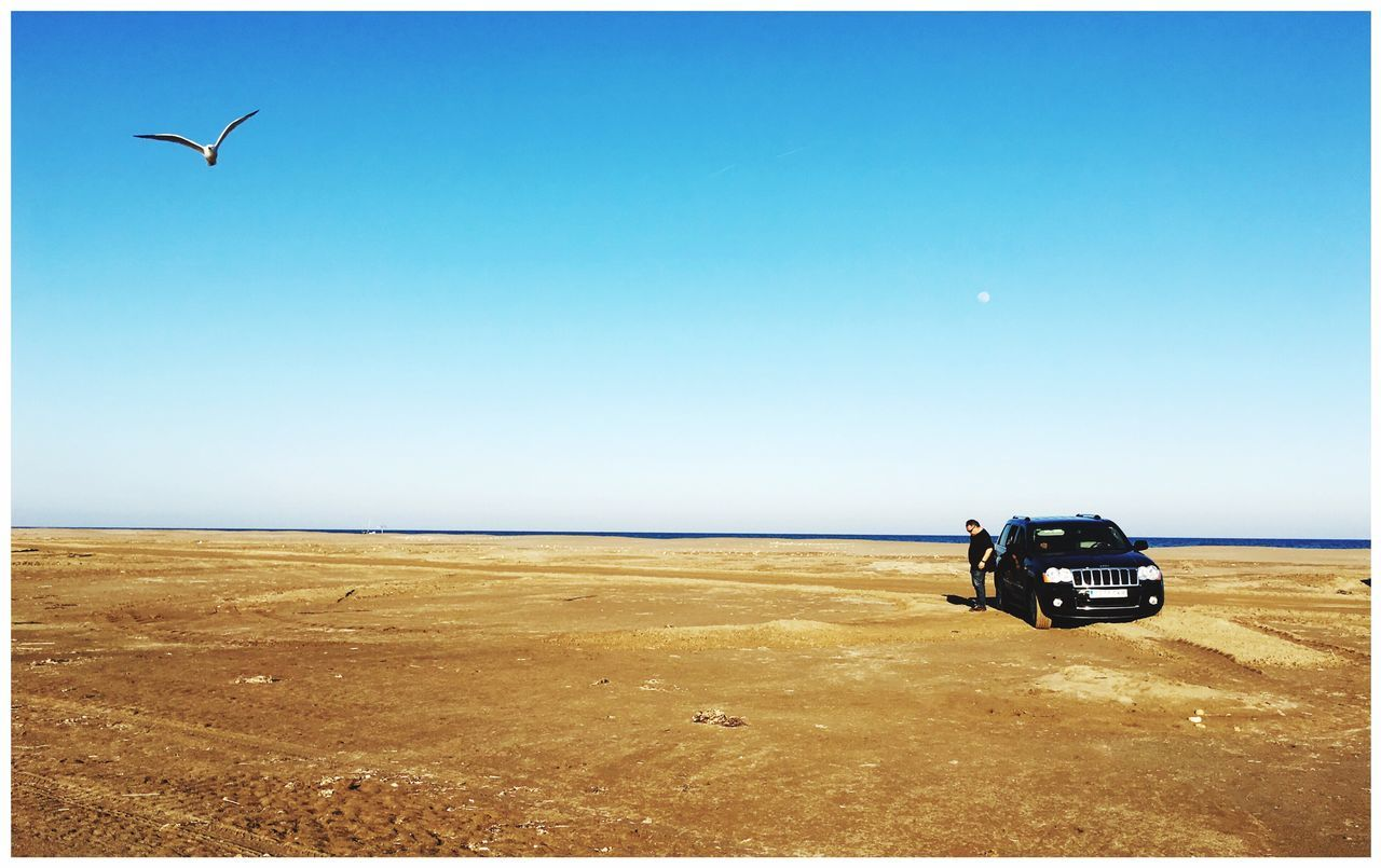 clear sky, sea, nature, scenics, landscape, transportation, copy space, beauty in nature, horizon over water, tranquil scene, day, sky, sand, blue, mode of transport, outdoors, tranquility, water, no people, animal themes