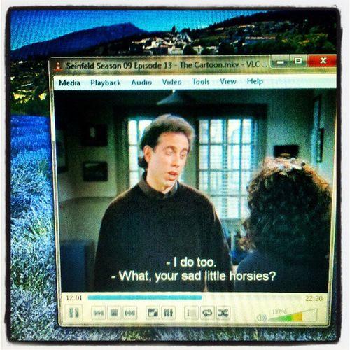 Seinfeld Seinfeld Funny JerrySeinfeld