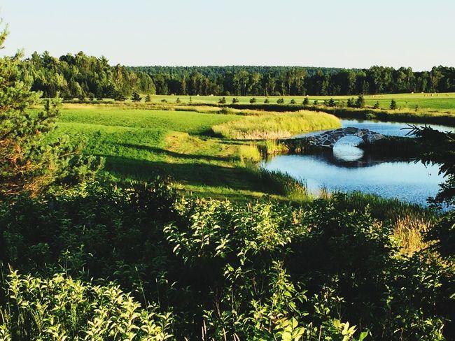 Nature On Your Doorstep POV Of Dee Northern Ontario Highway 17 Bridges Creek
