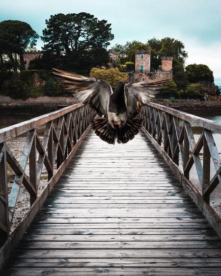 View of footbridge on bridge against sky
