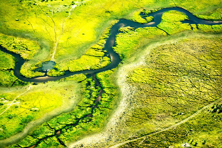 Botswana Chobe National Park Aerial View Beauty In Nature Day Environment Field Full Frame Green Color Growth Land Landscape Nature No People Okavango Delta Outdoors River Rural Scene Scenics - Nature Swamp Tranquil Scene Tranquility Unspoilt Water Wilderness The Great Outdoors - 2019 EyeEm Awards The Great Outdoors - 2019 EyeEm Awards