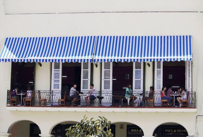Coffee Time Coffee Break Terrace Havana, Cuba Old Havana, Cuba Terraced Field Happy Holiday