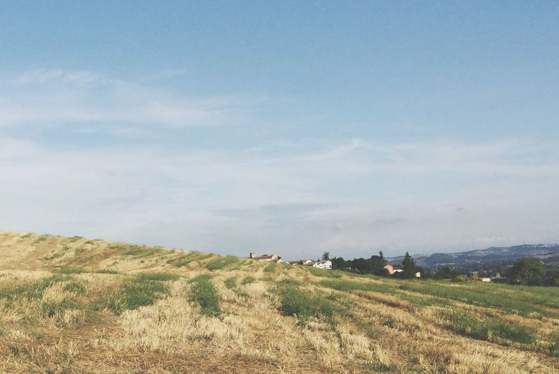Case tra campi e cielo Landscape Sky Environment Tranquil Scene Land Scenics - Nature Agriculture Nature
