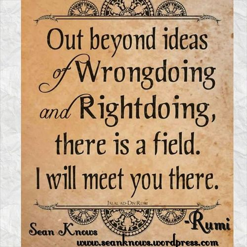 Out beyond Ideas of Wrongdoings and Rightdoings , there is a field. I will meet you there. Rumi seanknows nonjudgement quotes