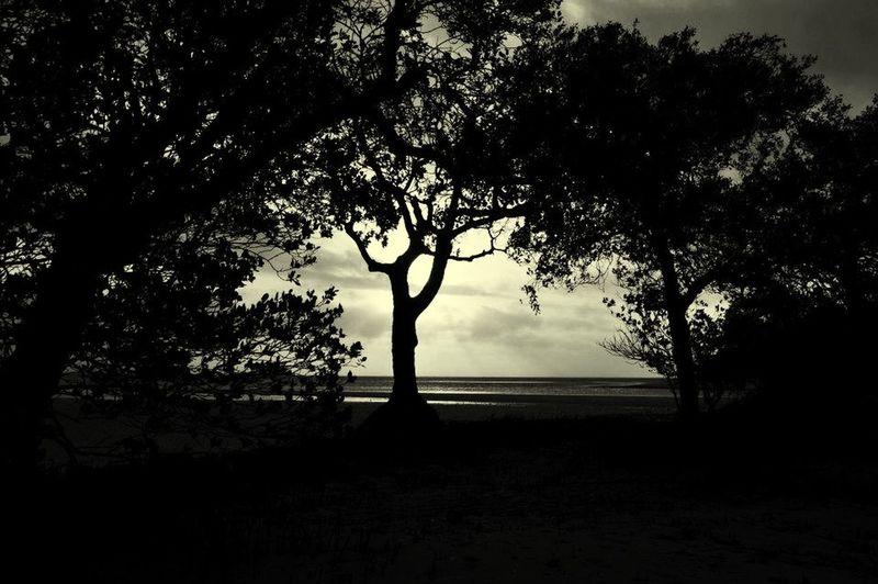 Poe Beach New Calédonia First Eyeem Photo
