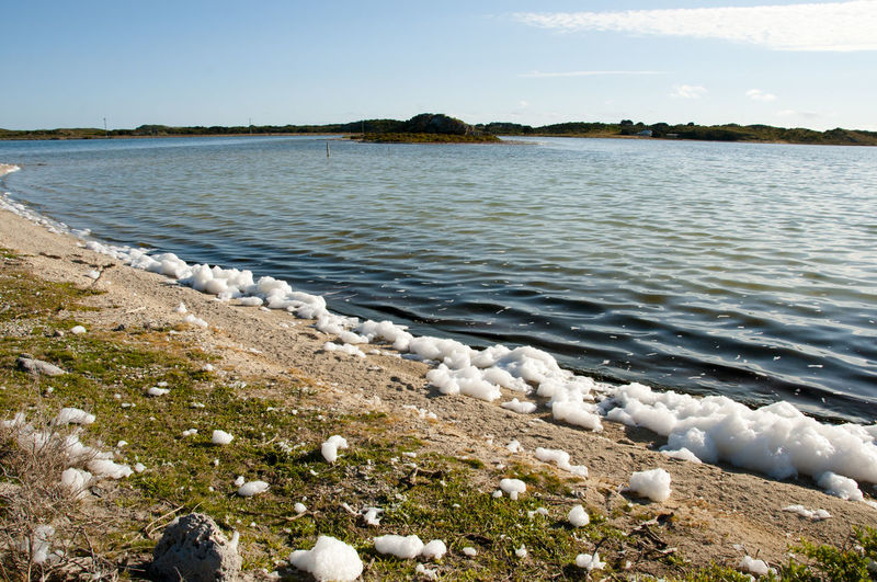Salt Foam on Herschel Lake - Rottnest Island - Australia Australia Herschel Lake Rottnest Island Salt Foam Lake Nature Outdoors Water
