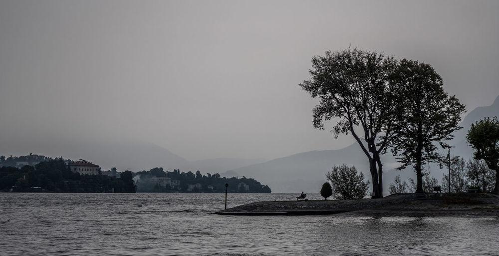 A grey misty