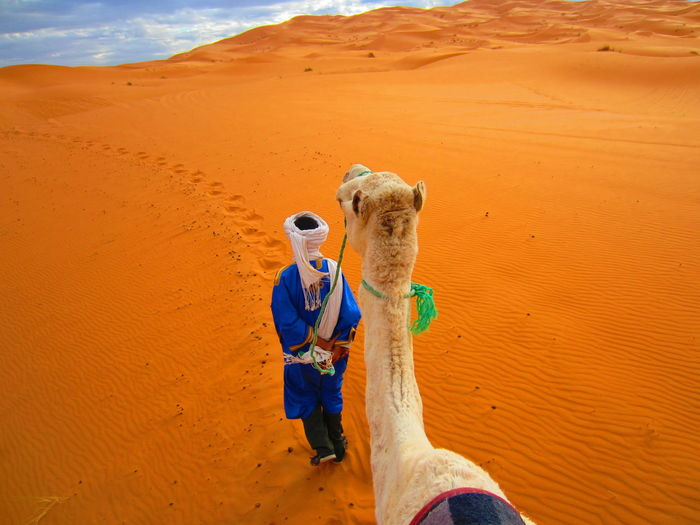 Man with camel standing on sand