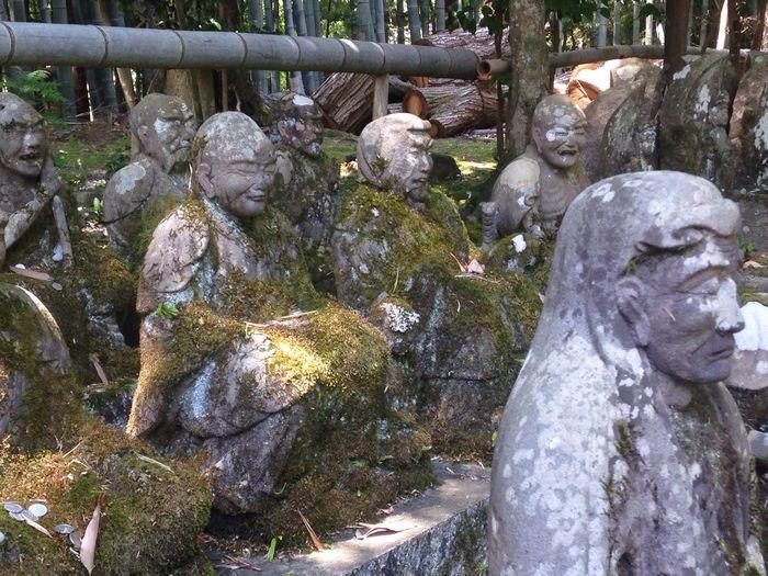 赤山禅院 Kyoto 京都 sekizanzenin temple
