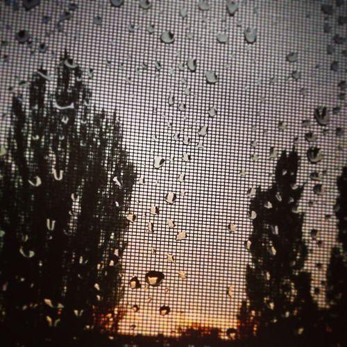 Kutyaólak csöndje vonyít akkor ott majd, Kóbor asztalt éjidőn terít és fejet hajt. Ráncos kézzel haragosan hagy mindent félben, S vesszőnyi fák ként sírva dőlnek az ég infravörösében. Ha végül döntött ott fenn. Apocalypse Sundown Storm Raindrops Silhouettes Silence Pilinszky Heritage Budapest Obuda