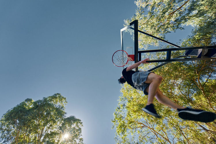 Adelaide, South Australia Basketball Freedom Jump Nature Sportsman Trees Jumping Sport Sports Success Training