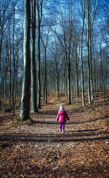 Rear view of girl wearing warm clothing while walking in forest during autumn