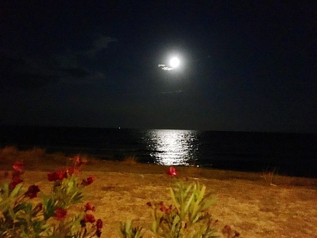 Moon Sea Night Nature Beauty In Nature Beach Scenics Horizon Over Water Sand Water Sky