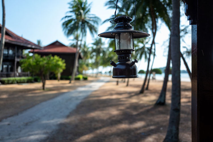 Langkawi Tree Lighting Equipment Focus On Foreground Plant Nature No People Street Built Structure Architecture Day Building Exterior Outdoors Technology Building Street Light Palm Tree Transportation Electric Lamp Lantern