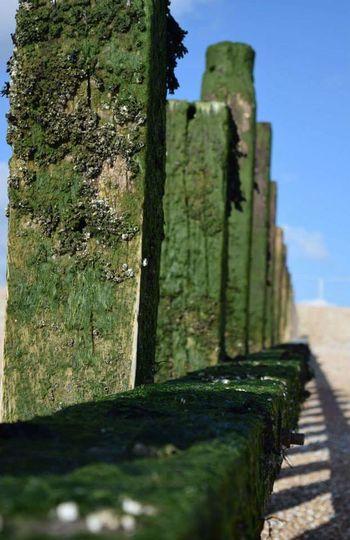 Seaside Pebbles Beachphotography Beach Defence Seaweed