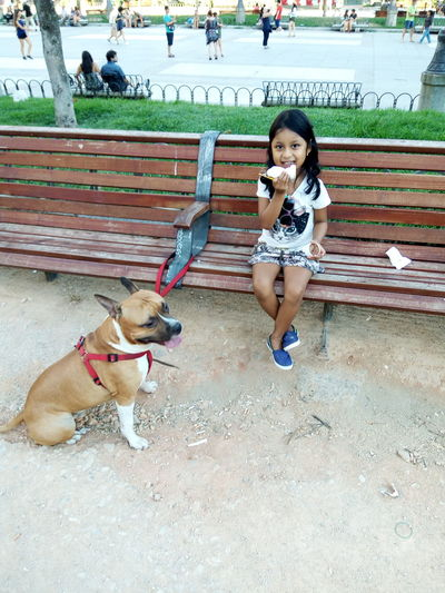 Animal Themes Blanca Childhood Day Dog Domestic Animals Full Length Ice Cream Time Jefe Jefe Boy Lifestyles Mammal One Animal One Person Outdoors People Pets Plaza De España, Sevillahoy Real People Sitting