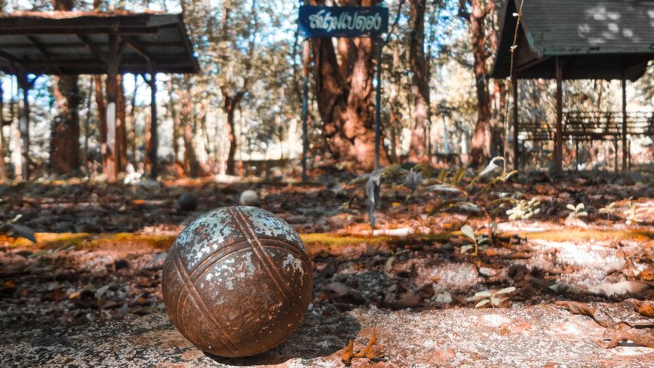 Pétanque ball Pétanque Balls Pétanque Players Ball Petanque Time Day No People