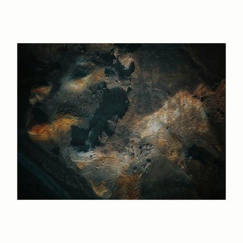 Digital composite image of animal in water