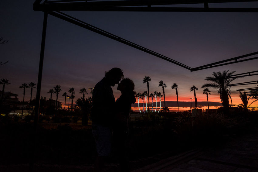 romantic couple in love outdoor in sunset between palm trees Romantic Bonding Couple In Love Lifestyles Men Nature Night Outdoors People Real People Silhouette Sky Standing Suggestive Place Sunset Tenderness Togetherness Tree Two People