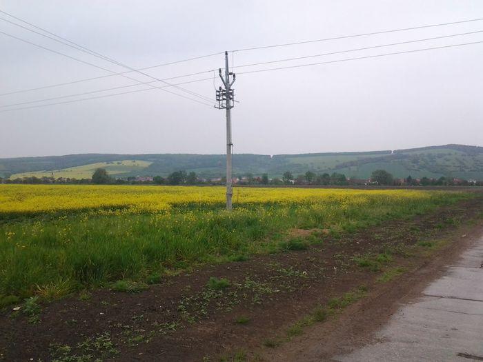Pohled od hnojišťa směrem na Kněždub Electricity  Electricity Pylon Elektrickyslup Hills Jasomsadosral Kopcevzadu Kurvapica Lodvpristavu Nohomo Panelka Repkaolejka Sky Uhnojista Zlutasracka řepka