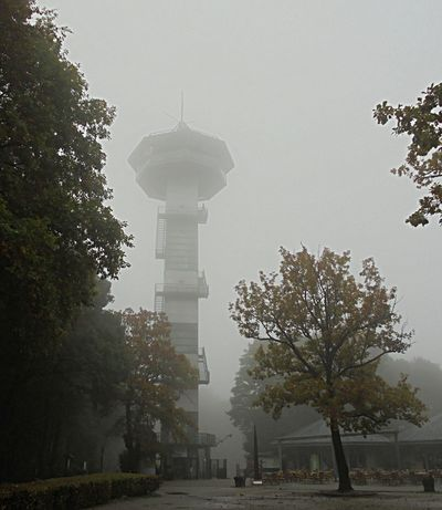 Dreiländereck Drielandenpunt DitisLimburg Autumn🍁🍁🍁 Hefst Foggy Day Vaalserberg Outlooktower Outdoors Morningwalksarethebest