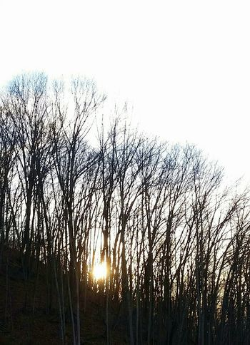 Sun Going Down Nature Ohio, USA