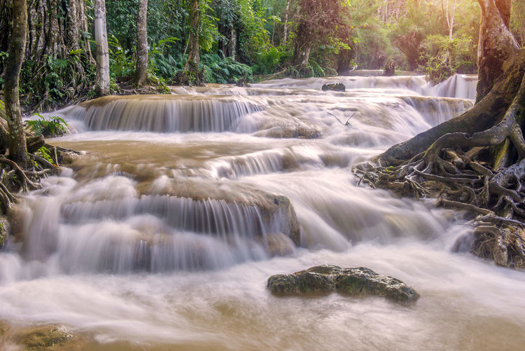 Long Exposure Motion Tree Beauty In Nature Scenics - Nature Waterfall Forest Water Flowing Water Blurred Motion Plant Flowing Nature Rock Rock - Object Day Solid Land No People Outdoors Power In Nature Rainforest Falling Water