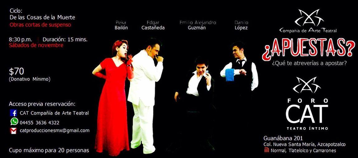 Peka Cure Theaterlovers Comingsoon Theater Life Sra Rabbit Apuestas People Apoyando A Mi Mexico Lindo Y Querido 🇮🇹 HechoenMéxico Apoyaeltalentomexicano🇲🇽 Yovoyalteatro🎭 Teatro Suspenso
