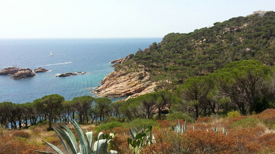 Landscape_Collection Landscape Seascape Sea And Sky Catalunya Eyem Nature Lovers  The Purist (no Edit, No Filter) The Great Outdoors - 2015 EyeEm Awards 16:9 Nature On Your Doorstep