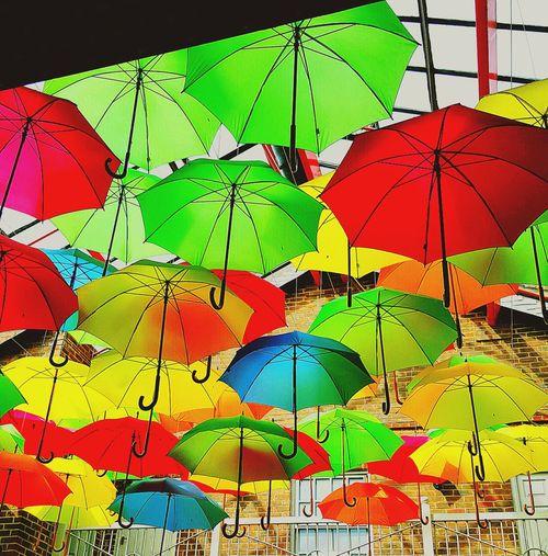 Umberellas Umbrella Revolution Umbrellastreet Umbrellas In The Sky Umbrellas Act Decorations Umbrella's Sky Colour Theraphy Colorsplash Colour Explosion Protecting What We Love Mix Yourself A Good Time