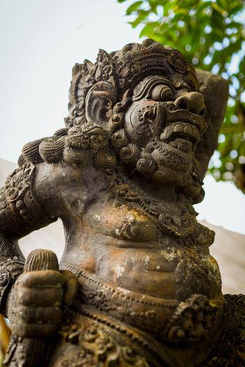 Hindu Old