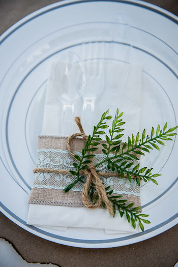 Plant with tablecloth and plastic eating utensils in plate