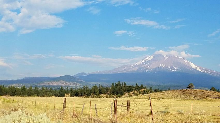 Mount Shasta, California Mountain Cloud - Sky Sky Tree Fenceline Fence Countryside Rural Scene Rural Landscape Mountain Purple Snow Intense Golden Grasses Misty Quality Of Life Gold Surreal Mindful Idyllic Dramatic Zen The Week On EyeEm Tranquility