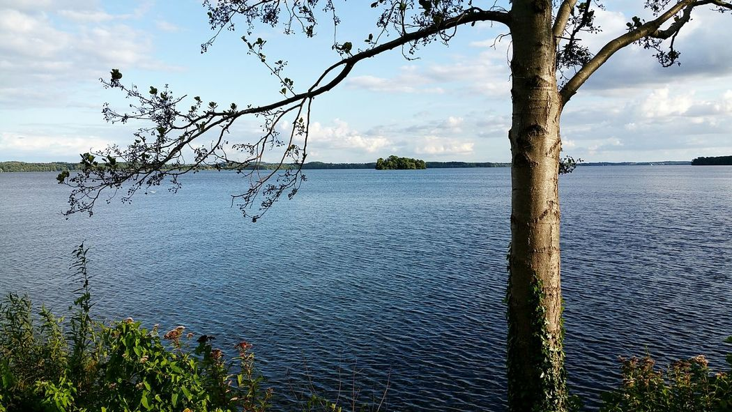 Tree Water Lake Cloud - Sky Landscape Outdoors Nature Beauty In Nature Tranquility Sky No People Day Growth Scenics Horizon Over Water Panorama View Power In Nature Schleswig-Holstein Plöner See Plönersee Panoramic Photography Tranquility Tree Nature Clear Sky