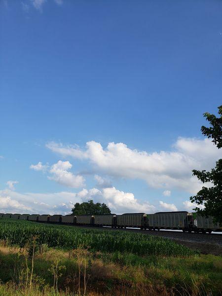 Coal Train Tree Sky Cloud - Sky Farmland Growing