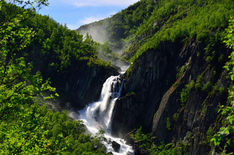 Waterfall in Norway Hiking Norway Norway ✌ Norway🇳🇴 Beauty In Nature Flowing Flowing Water Forest Forest Photography Forest Trees Forest Waterfall Forestwalk Green Color Hiking Adventures Hiking Trail Hikingadventures Hikingphotography Hiking❤ Nature No People Norway Nature Outdoors Water Waterfall Waterfalls
