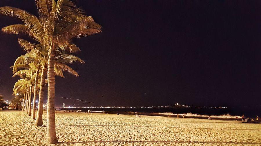 ĐàNẵng Biển đêm