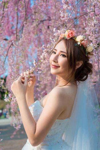 Sakura The
