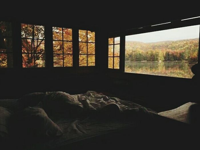Bedroom Window Taking Photos Nature Relaxing Release Tension
