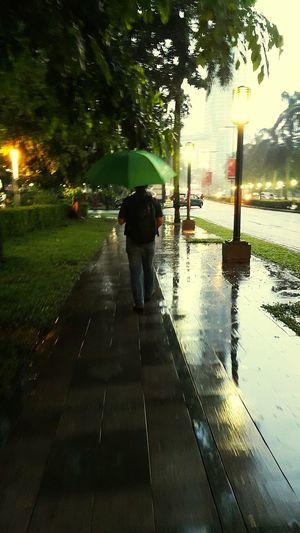 Walk This Way Umbrella Project😀