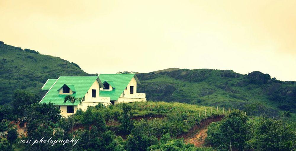 Landscape Green Hills