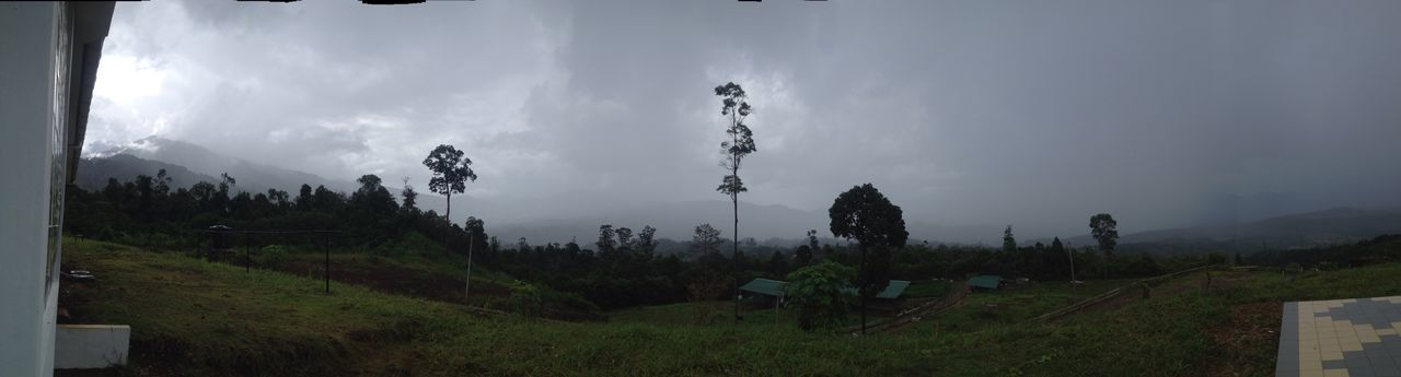 Cloud - Sky The Rain Is Coming Stuck Inside Outdoors Nature Tree