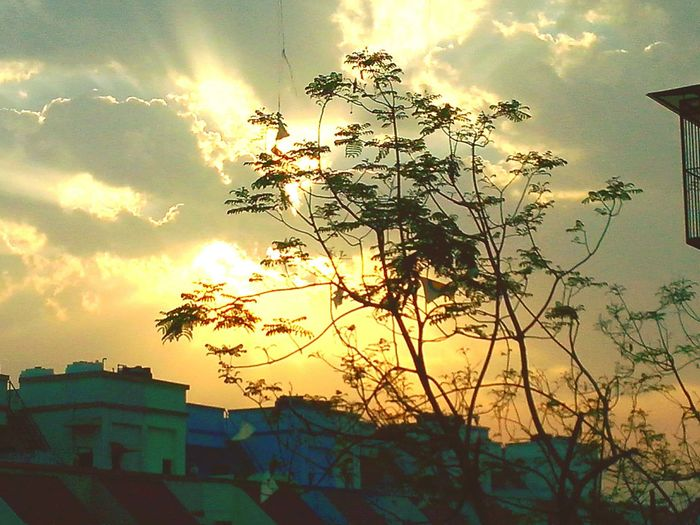 Eye Em Nature Lover Hello World Amzingview Naturelovers Nature_collection ...more Sunrise Good Morning Creative Light And Shadow The City Light Be. Ready.