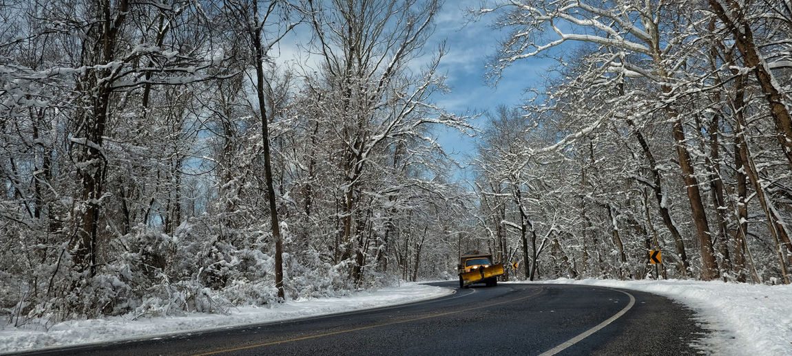 S Curve Snow Plow S Curve Bare Tree Beauty In Nature Car Cold Temperature Day Land Vehicle Motion Nature No People Outdoors Road Snow The Way Forward Transportation Tree Winter