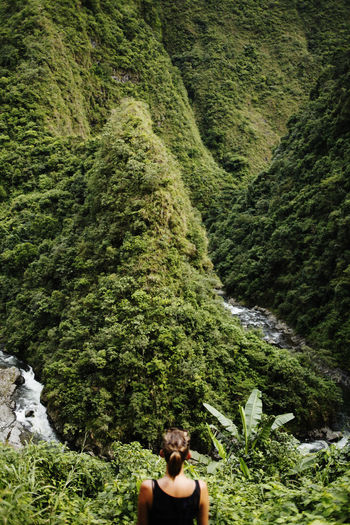 Plant Tree Foliage One Person Forest Lush Foliage Adult Nature Day Green Color Leisure Activity Women Growth Rear View Young Adult Beauty In Nature Land Hair Scenics - Nature Outdoors Philippines Banaue Rice Terraces