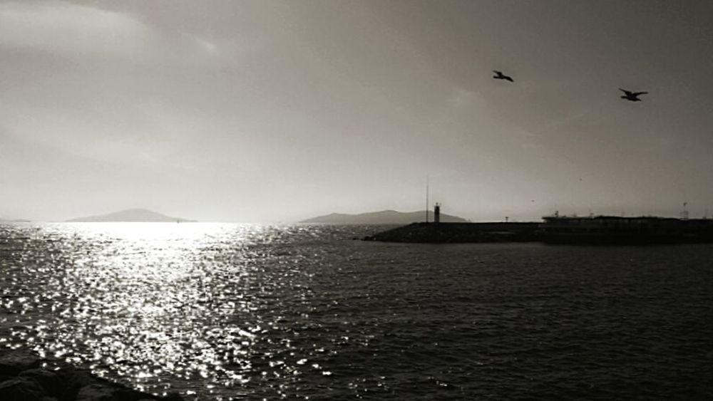 Showcase February Blackandwhite Photography B&w Nature B&w Photography Sea And Sky Clouds And Sky Silhouette Turkey ıstanbul Bostancı Adalarmanzara 😊😊