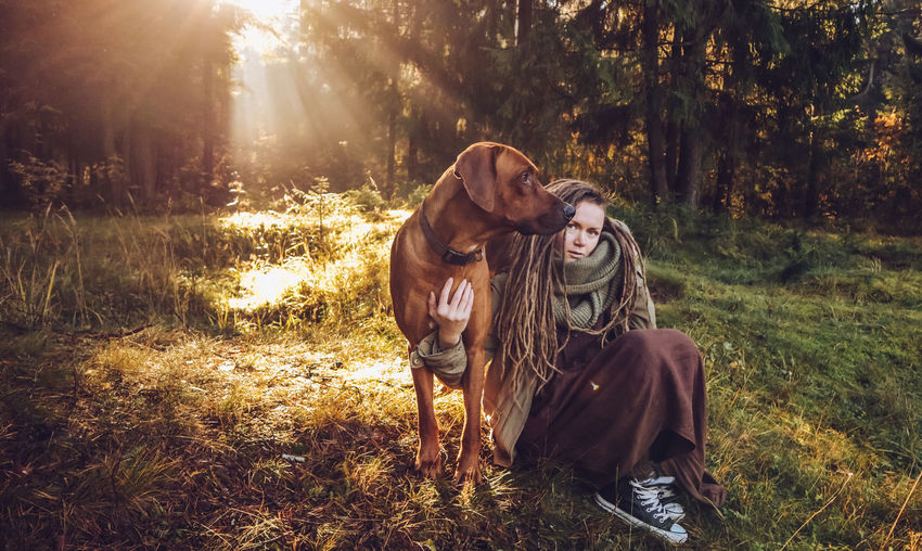Young smiling woman with dreadlocks in autumn fall forest in the morning sunshine playing with a dog ridgeback Tree Plant Land Real People Mammal Nature Pets Domestic Sunlight Leisure Activity Animal Forest Lifestyles Domestic Animals Animal Themes Field Two People Grass Togetherness Outdoors Lens Flare Pet Owner Dreadlocks Ridgeback