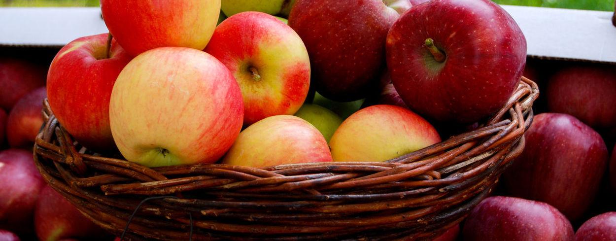apples Green Apples  Vitamins Apple - Fruit Apple Fruit Apples Applestore Close-up Day Food Food And Drink Freshness Fruit Healthy Eating No People Red Apple