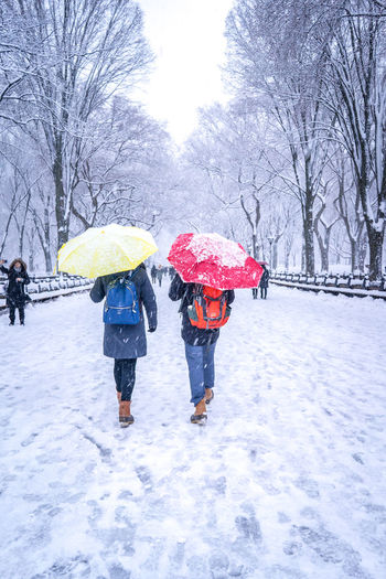 Couple with colorful umbrellas walking on the snow in Central Park located in New York City. Central Park Beauty In Nature Cold Temperature Extreme Weather Leisure Activity Nature Protection Real People Snow Snowing Togetherness Travel Destinations Umbrella Winter Winter Wonderland