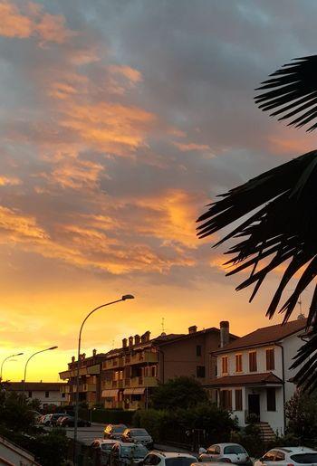 City Sunset Cityscape Nightlife Urban Skyline Beach Multi Colored Tree Silhouette Sky